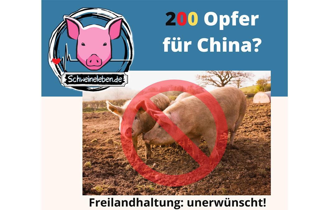 200 Opfer für China? Ach, sind nur Schweine…