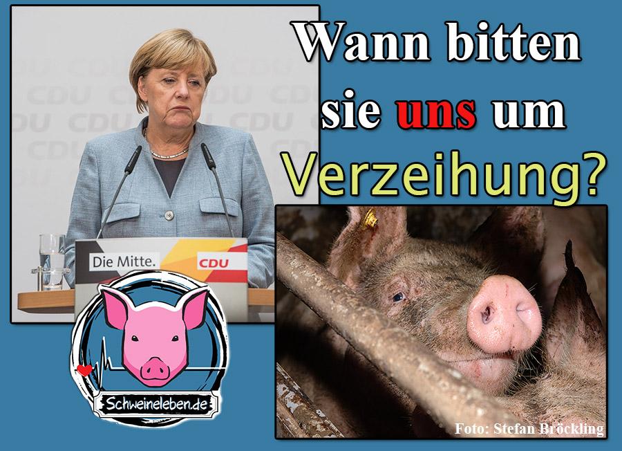 Frau Merkel und der Tierschutz