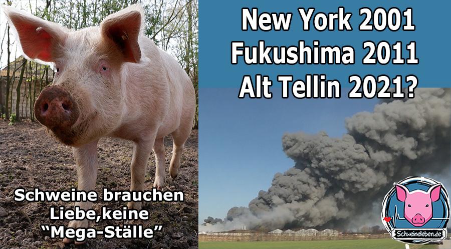 Schweinezucht brennt in Alt Tellin