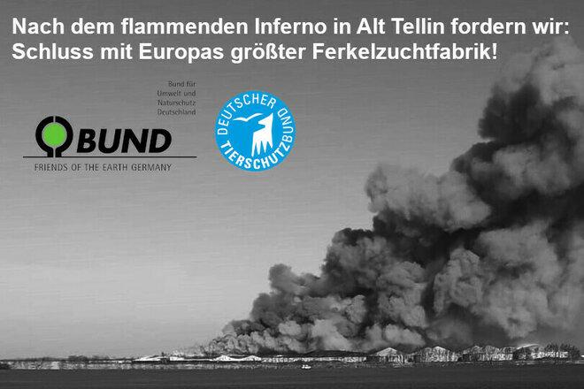 BUND-Petition gegen den Wiederaufbau der Schweine-Fabrik Alt Tellin
