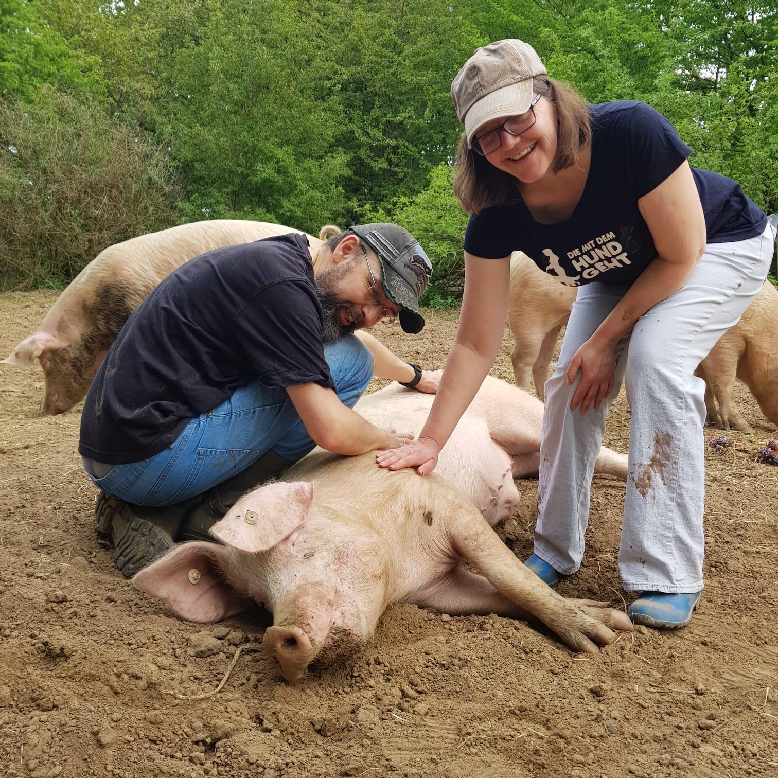 Heinsberger Schweinebande