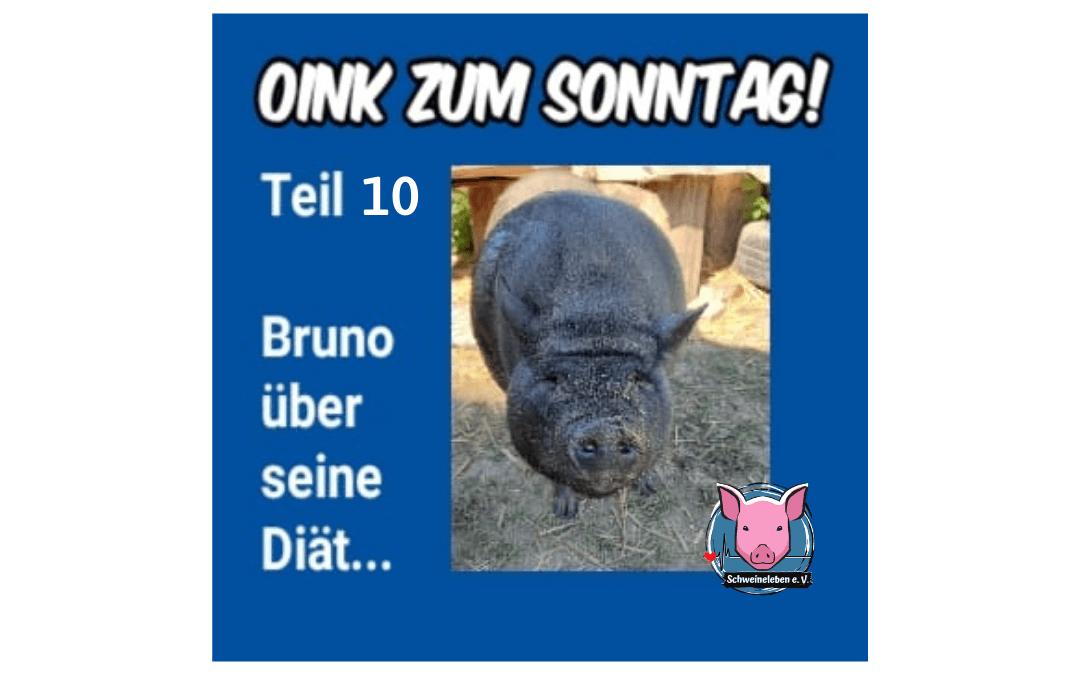 Das Oink zum Sonntag - Bruno über seine Diät