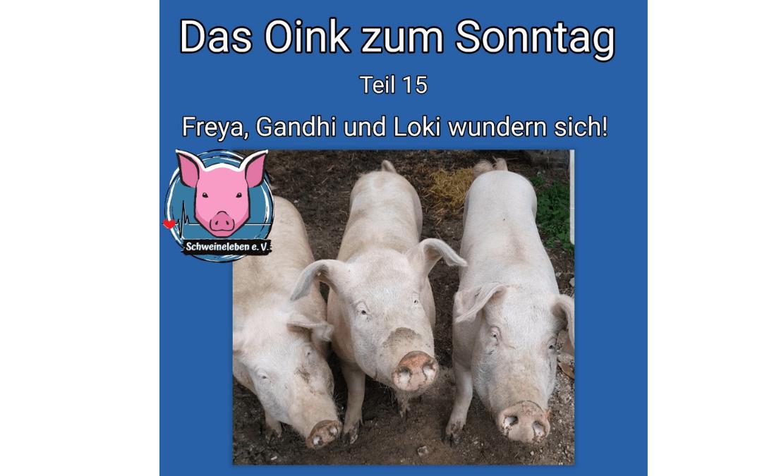 Das Oink zum Sonntag - Teil 15