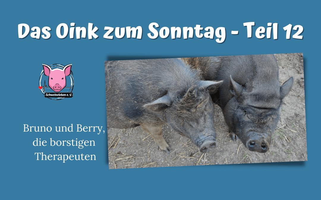 Das Oink zum Sonntag (Teil 12) – Bruno und Berry, die borstigen Therapeuten (von Natasha Leistikow)