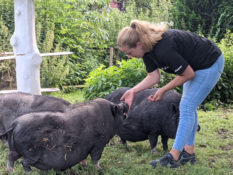 Dany Brandl und Minischweine