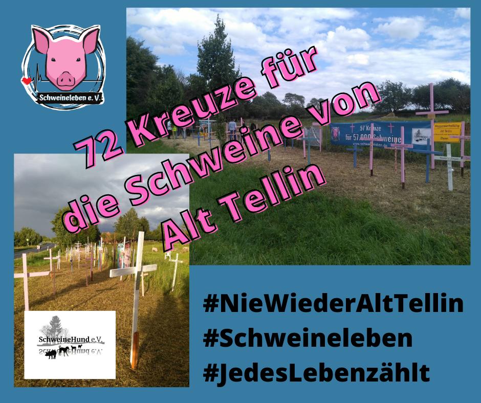Gedenkstätte für die Schweine von Alt Tellin mit 72 Kreuzen