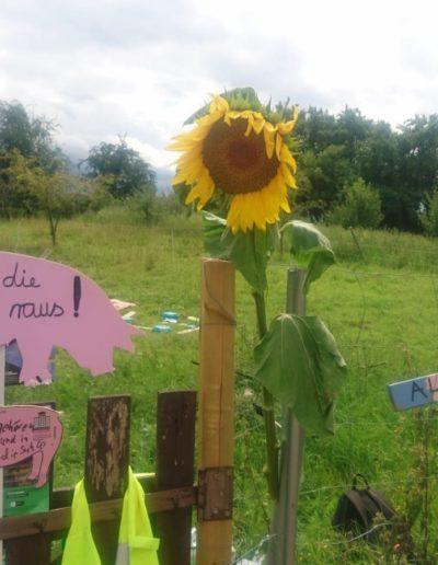 Gedenkstätte in Möllenbeck