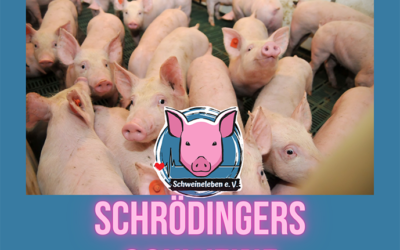 Schrödingers Schweine