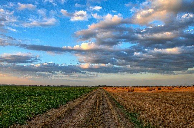 Feldweg Landwirtschaft