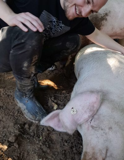 Schweine erleben - Michi im Glück