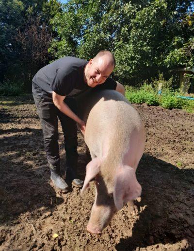 Schweine erleben - Geburtstagsgeschenk